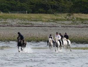 Galloping on Kilichronan beach
